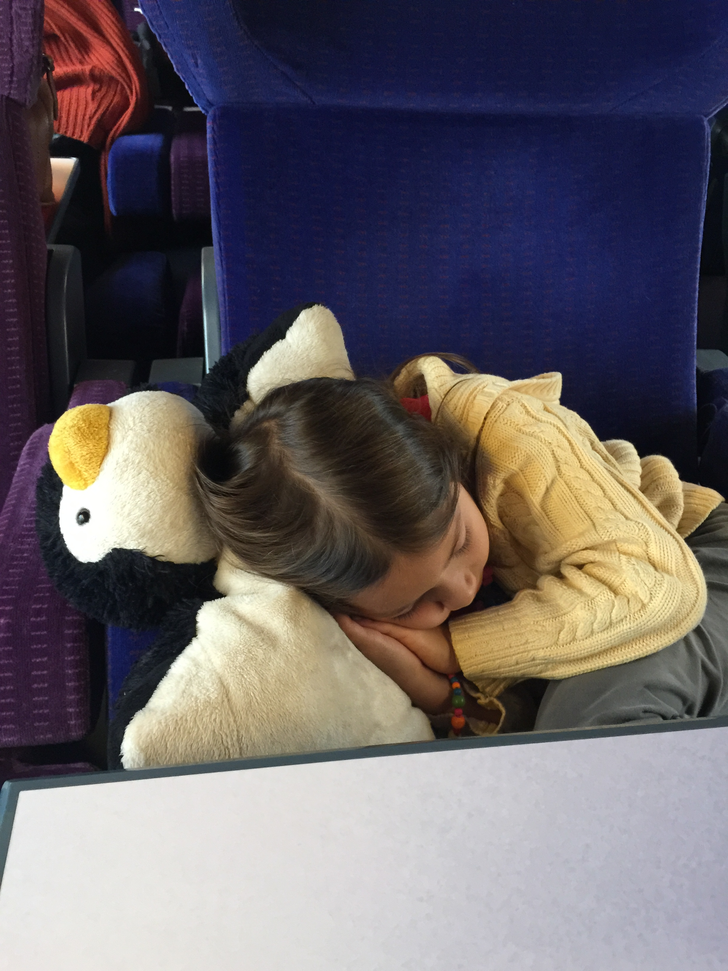 My daughter sleeping on a French train