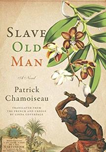 Slave Old Man French Fiction Novel Recommendation Modern 2019.png