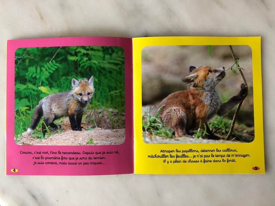 French fox cub childrens magazine toddler animal lover issue subscription usa learn french.jpg