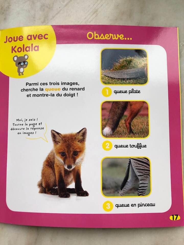 Kolala french toddler preschool magazine animal lovers blog review subscription.jpg