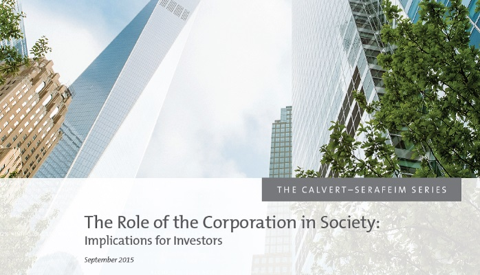 corporation-role-society