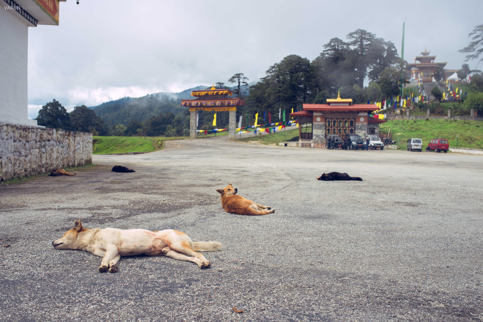 Bhutan_065.jpg