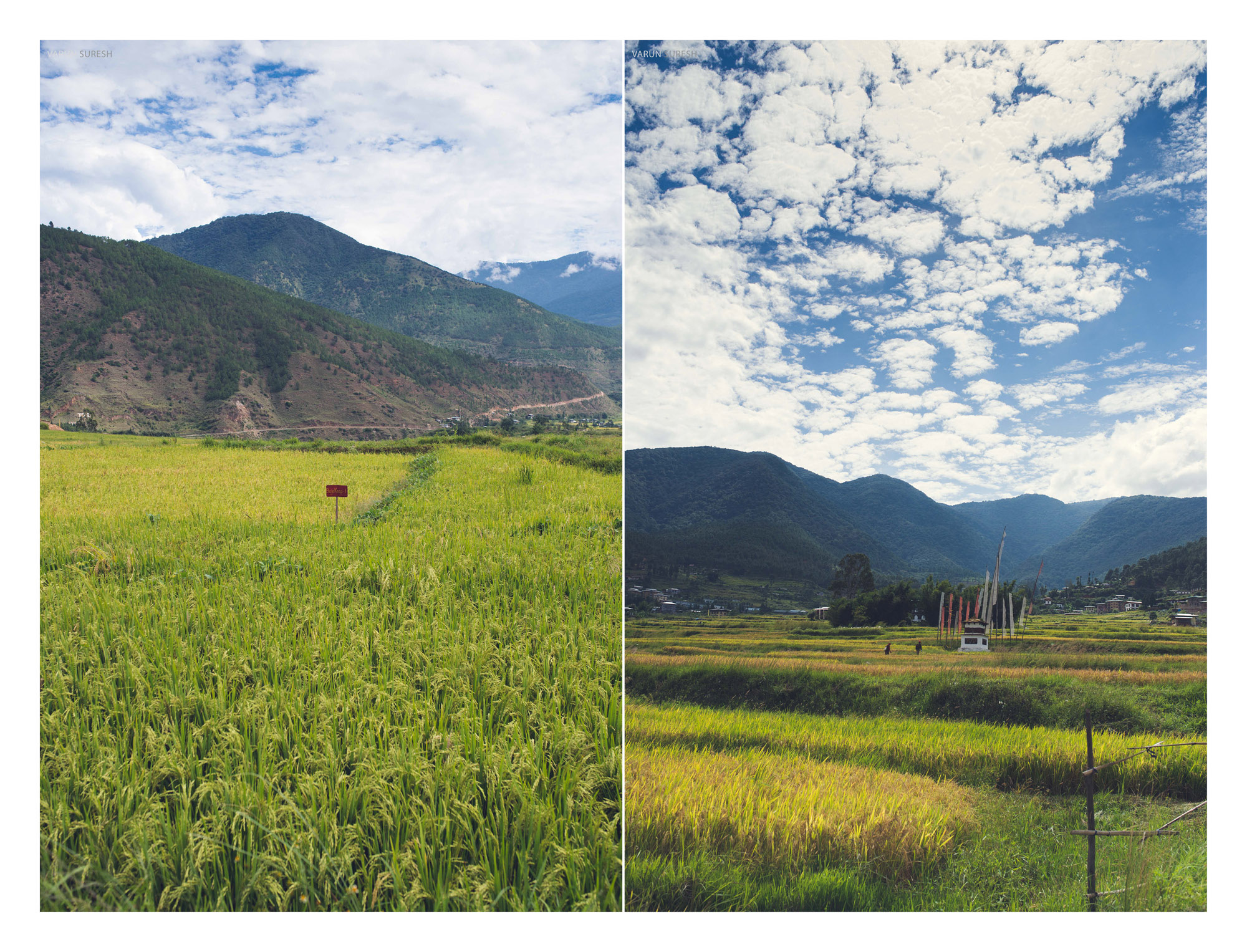Bhutan_123 copy.jpg