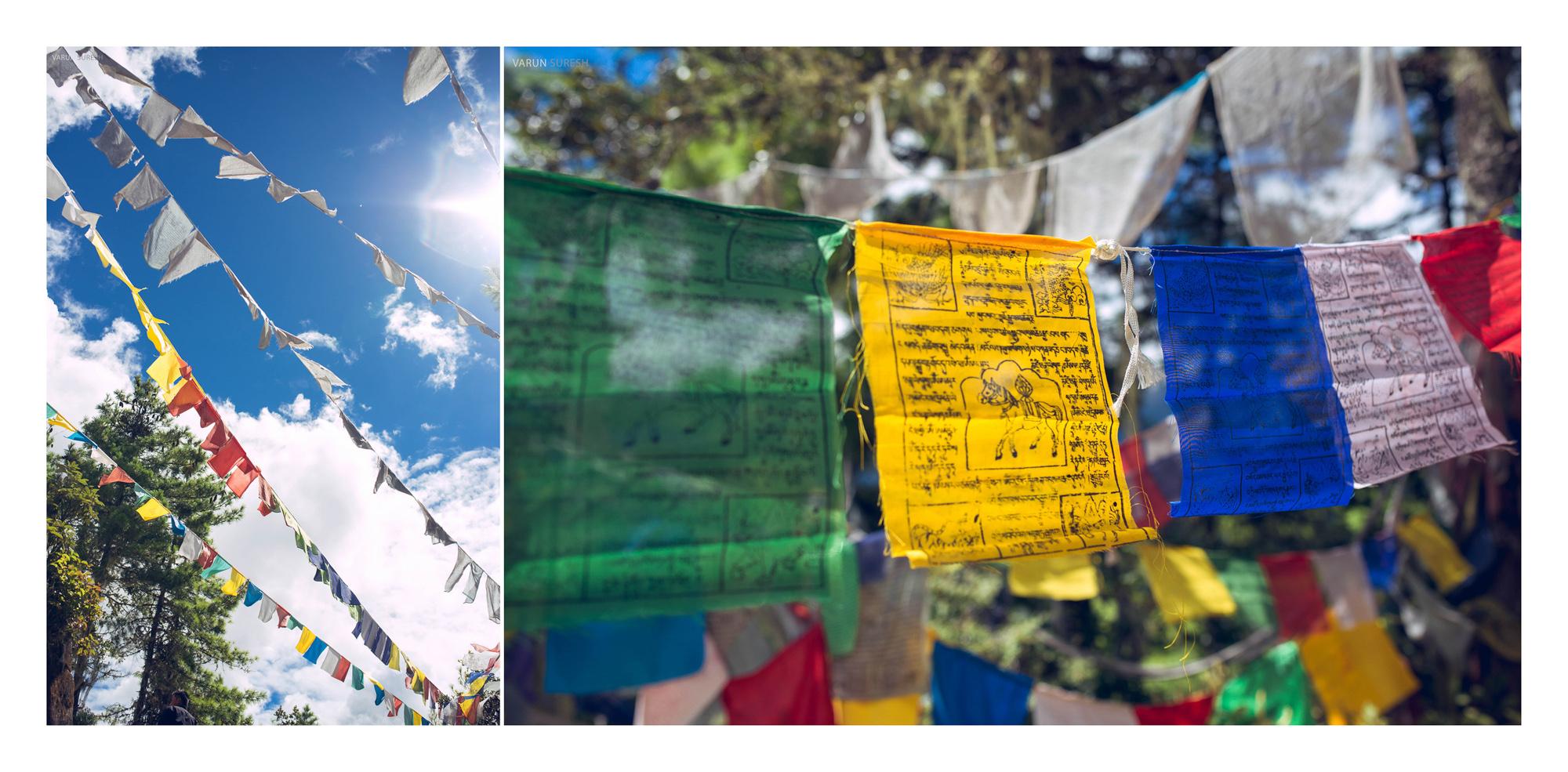 Bhutan_157 copy.jpg