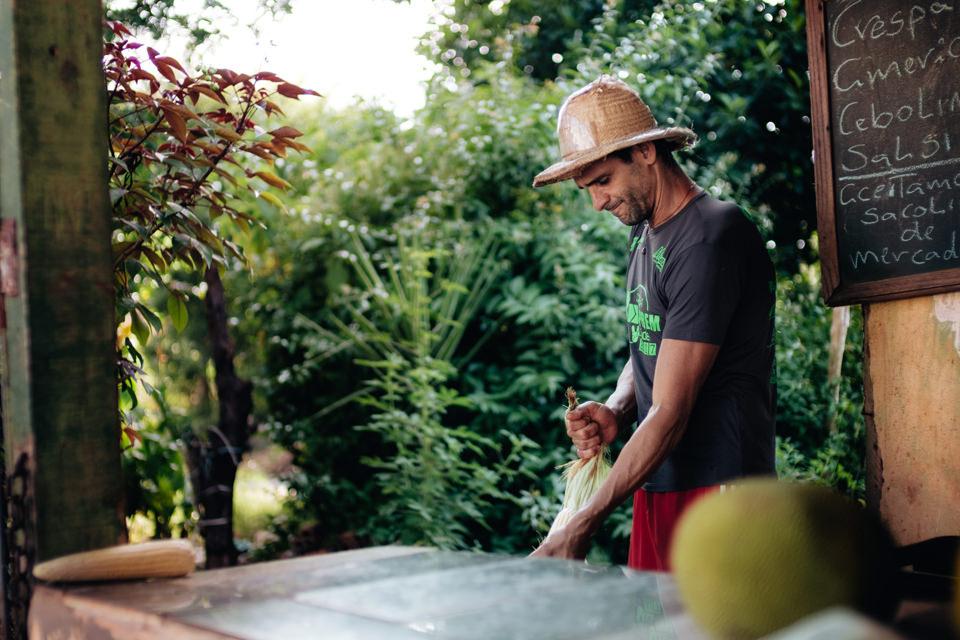 o martonista e a horta-7.jpg