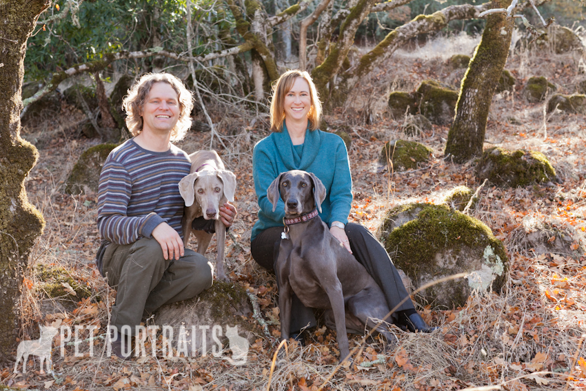 owners with two dogs in northern california pet photography session