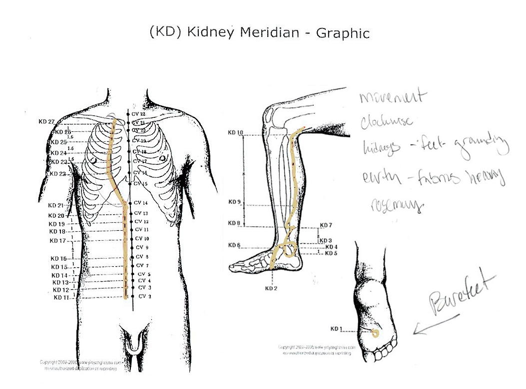 Original Kidney Meridian graphic from Yin Yang House