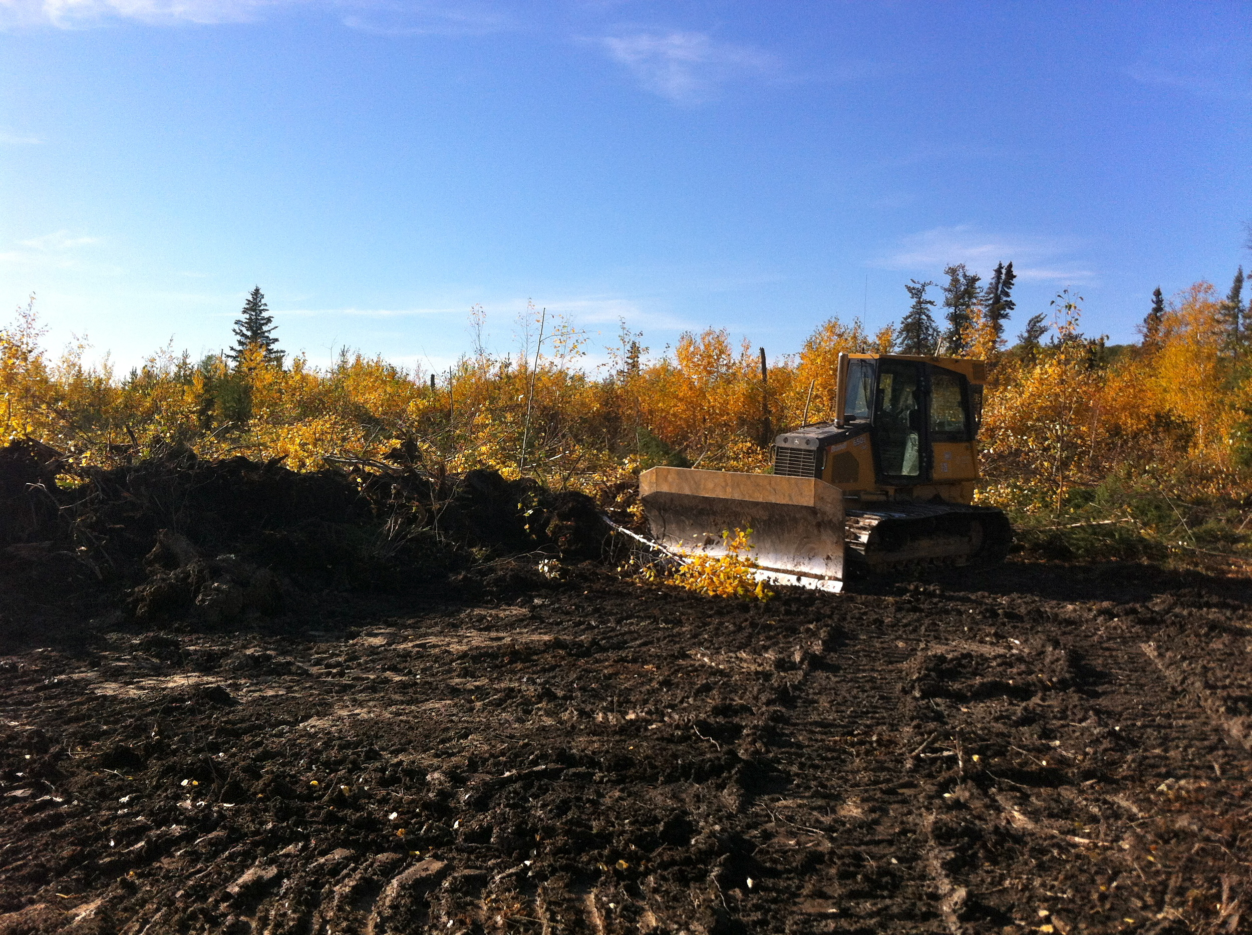 Clearing the land for the Meechim Farm. It may not look like much now, but come back next August and check us out!