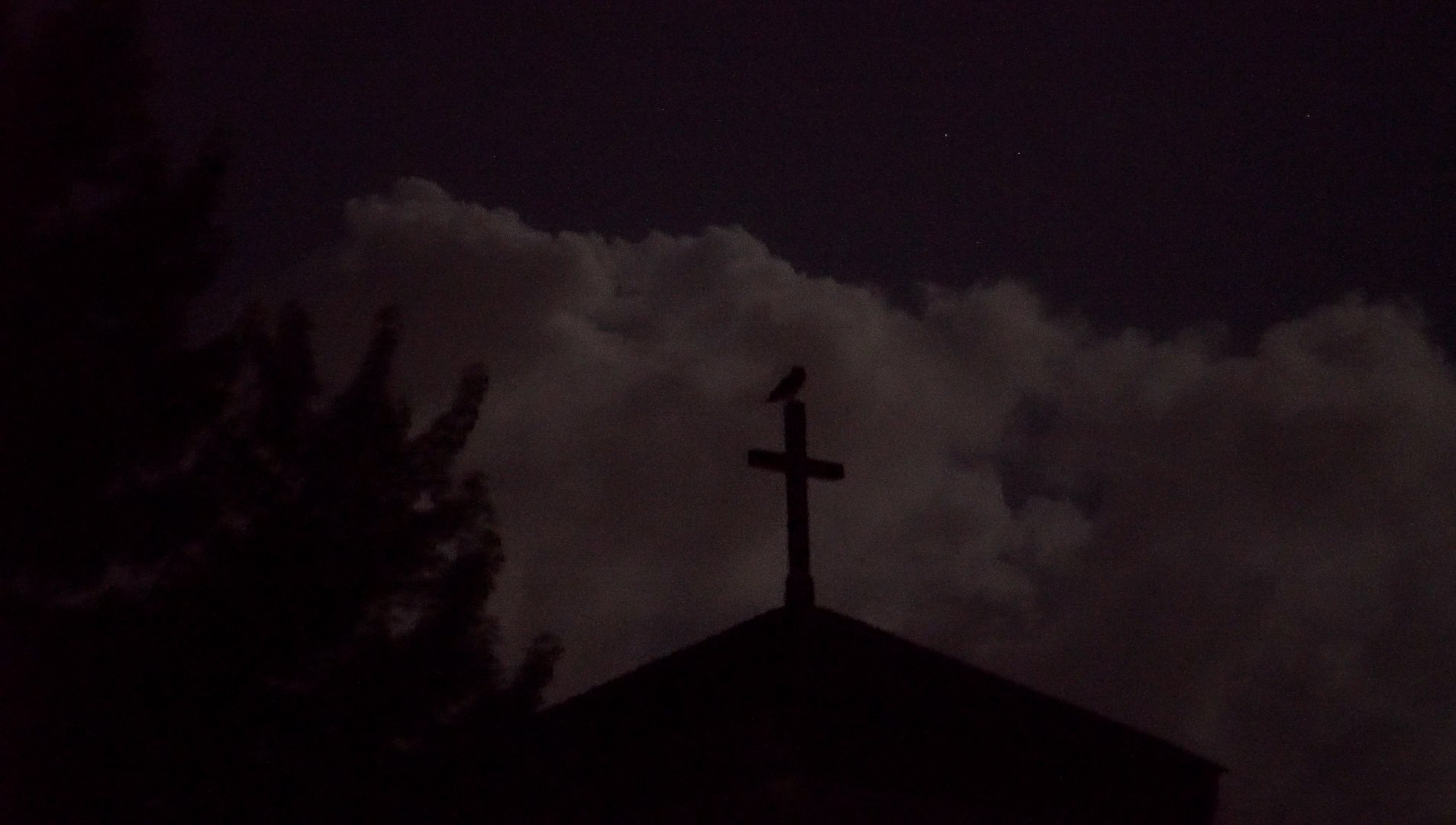 A Great Horned Owl sits on the cross of a monastery bell tower after a thunderstorm.