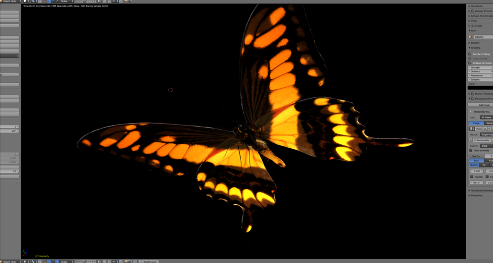 blender, b3d, butterfly, swallow tail, cycles, render, model, animation, insect, render, rigging, the night country