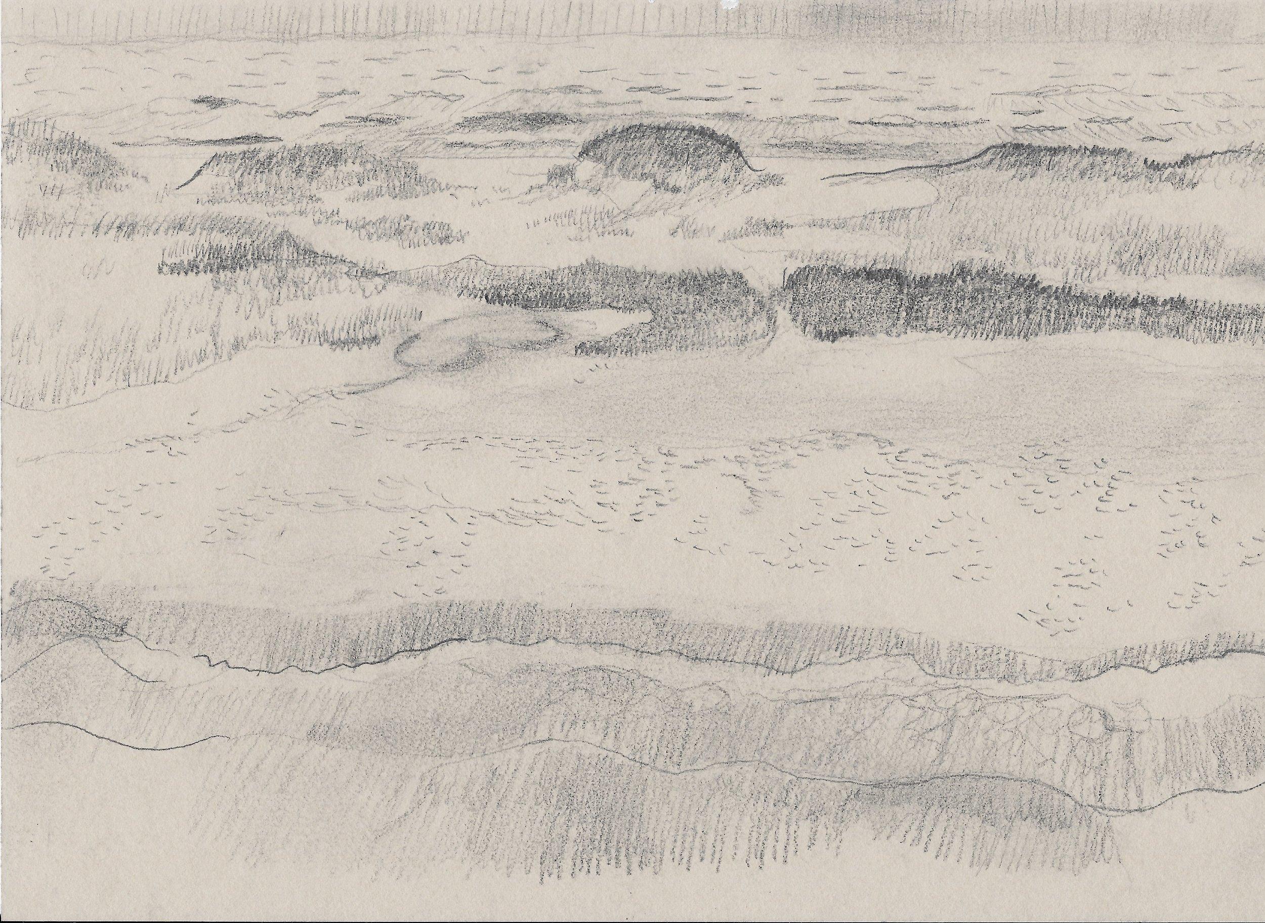 Dunes and Hoofprints