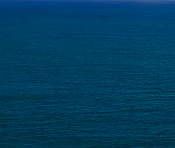 Present Absentee: Mahmoud Darwish