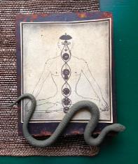 Yogi Snakeman.jpg