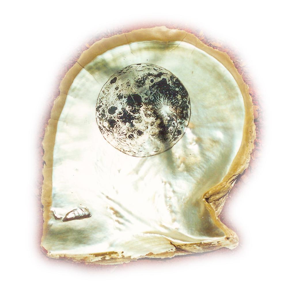Lunar, 2002