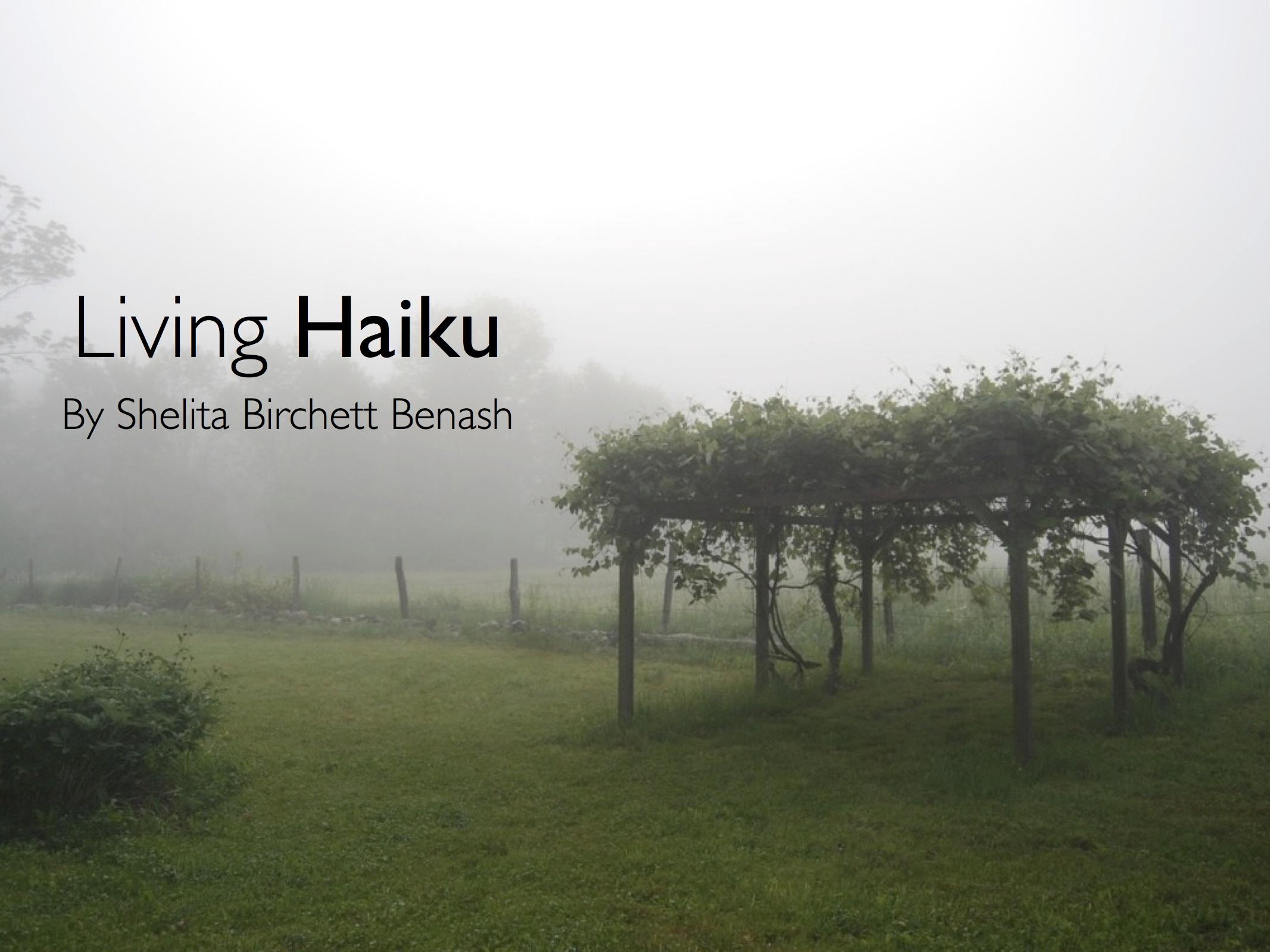 Photograph and haiku by Shelita Birchett Benash
