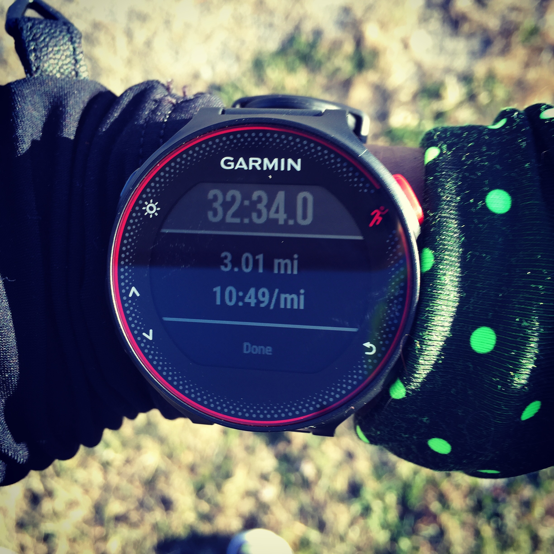 RUNNING NATURE_GARMIN RUN_SHELITA BIRCHETT BENASH_JANUARY 2016