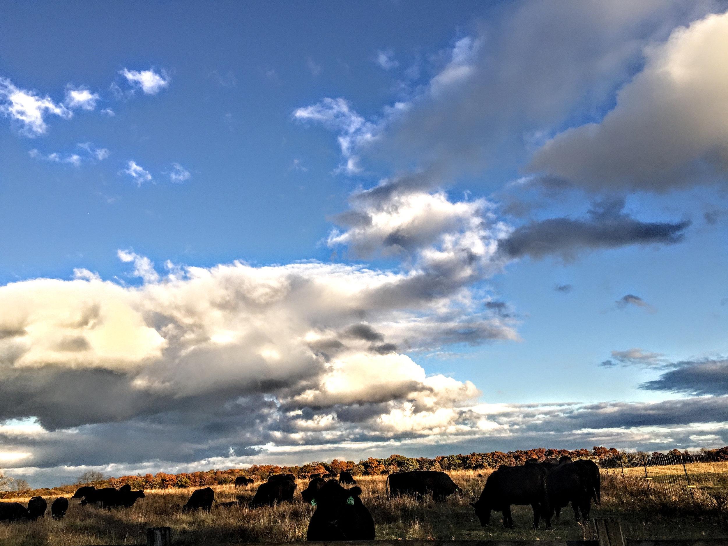 ©Shelita Birchett Benash  This is why we live here. God's glory. God Country.