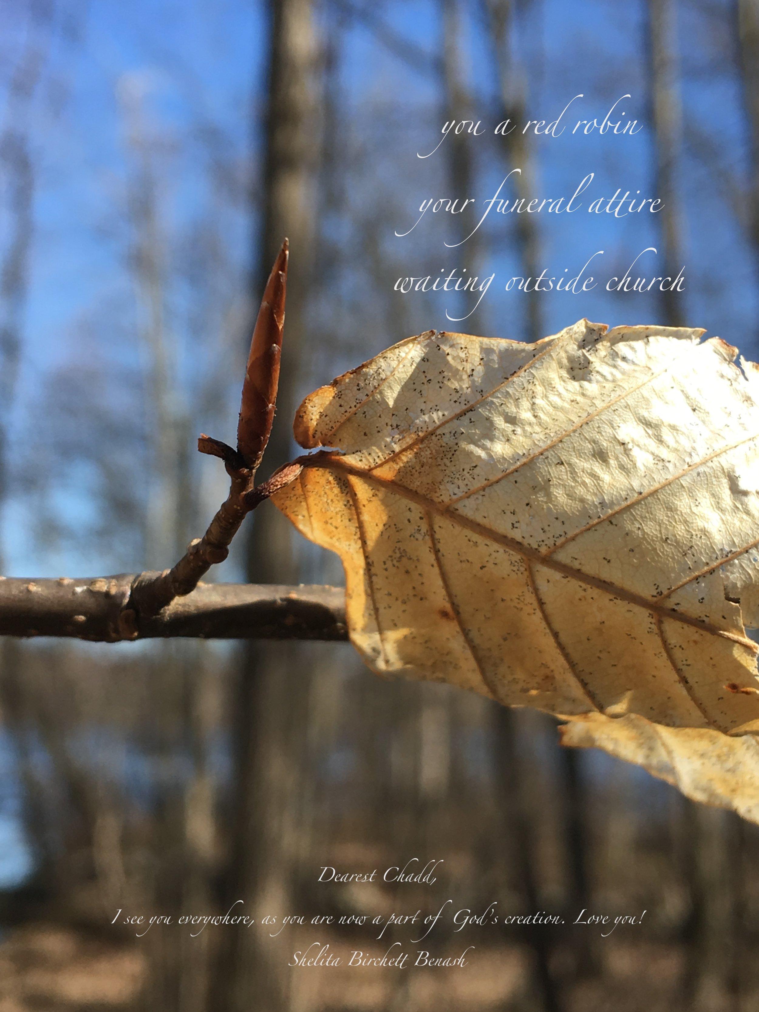 ©Shelita Birchett Benash