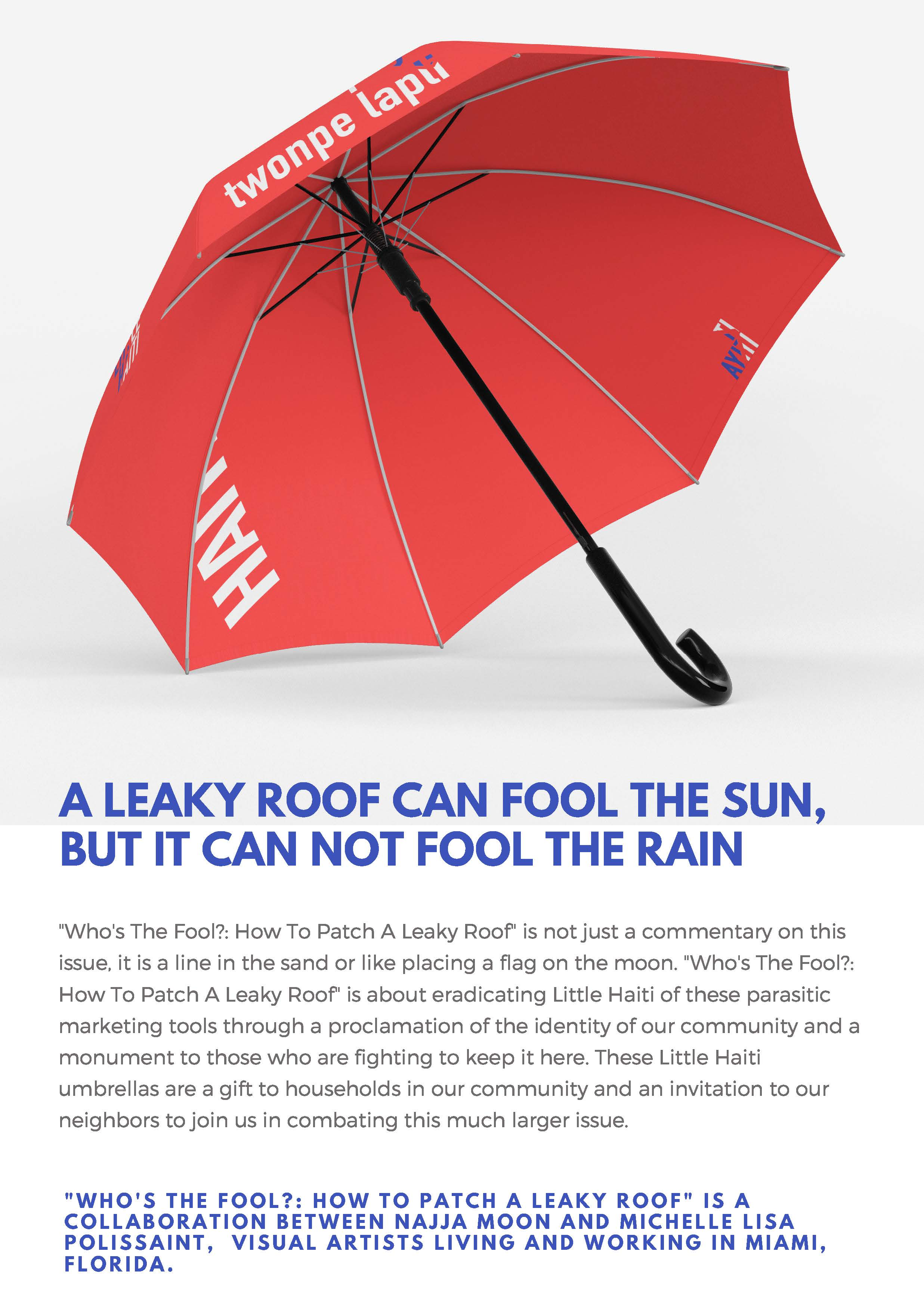 How To Patch a Leaky Roof - Najja Moon & Michelle Lisa Polissaint_Page_3.jpg