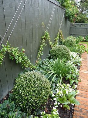 image source: HEDGE garden design & nursery