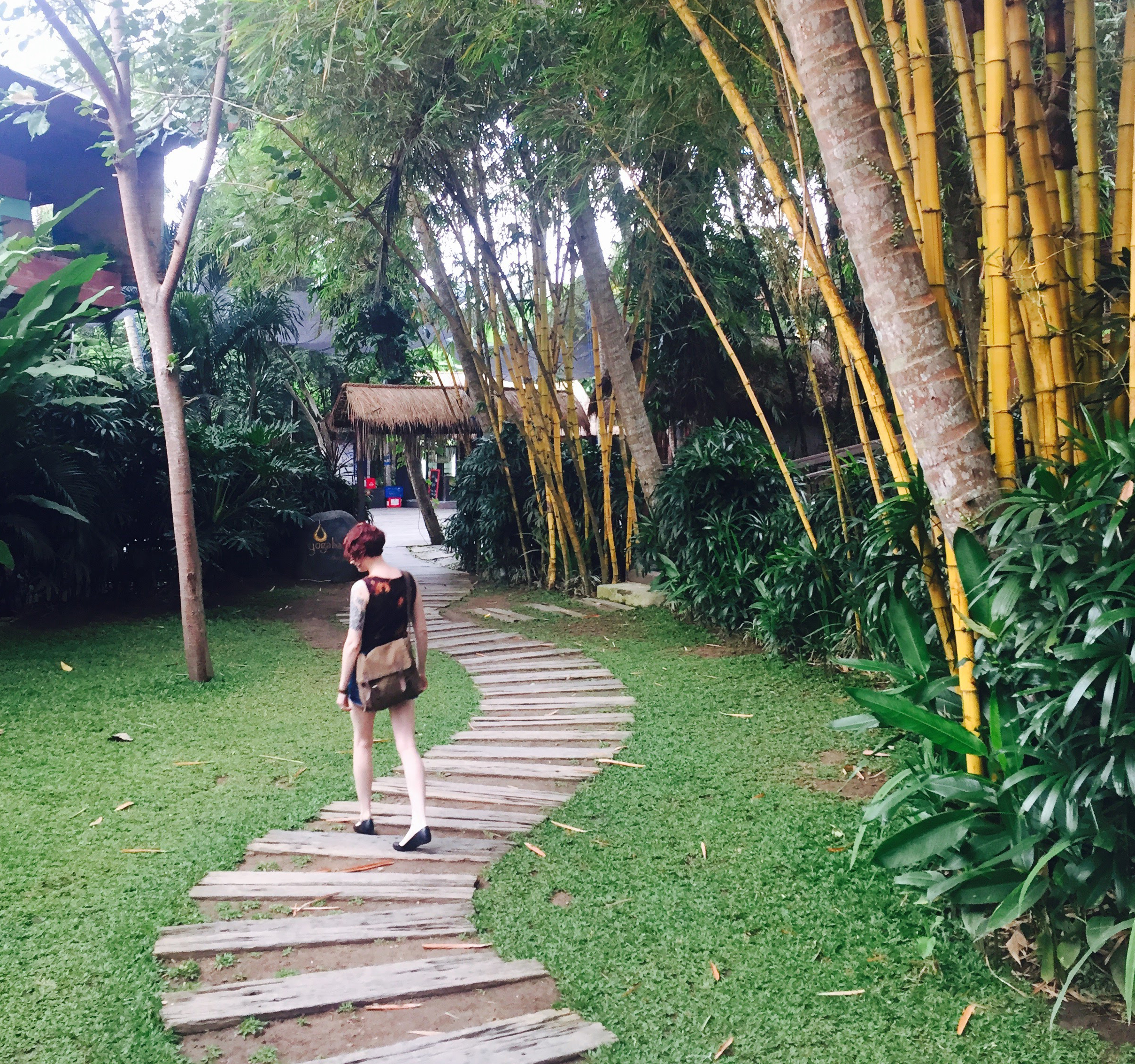 bamboo_walking.jpg