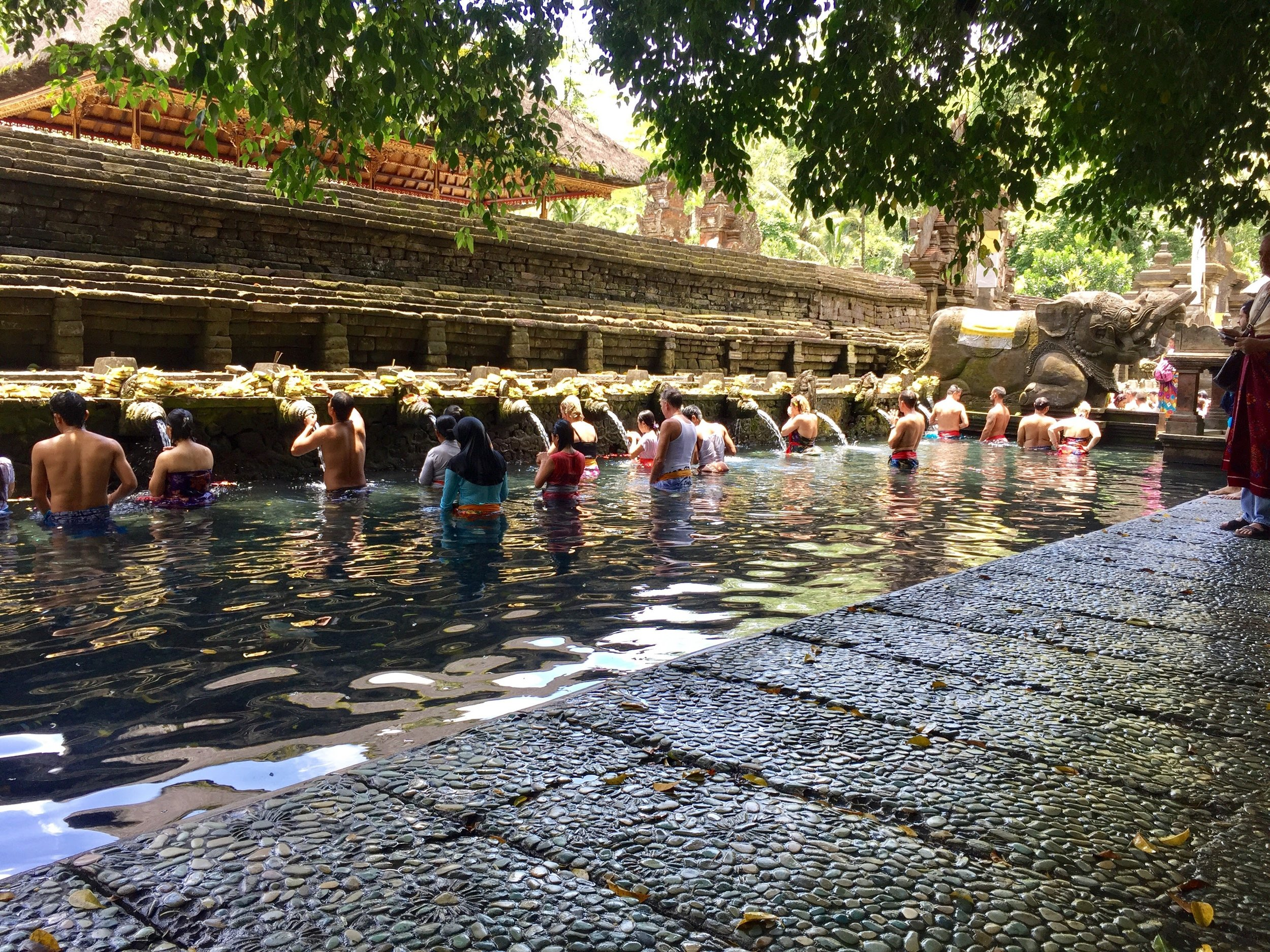 I fell in love with the Balinese culture, the more I learned about it. This is the holy water temple Tirta Empul where people from all over the world go to pray and get spiritual blessings.