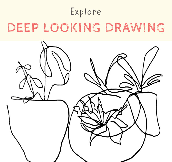 explore deep looking drawing.jpg