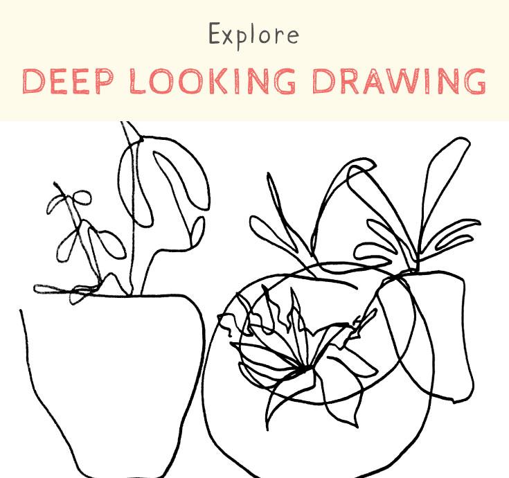 explore deep looking drawing.jpg