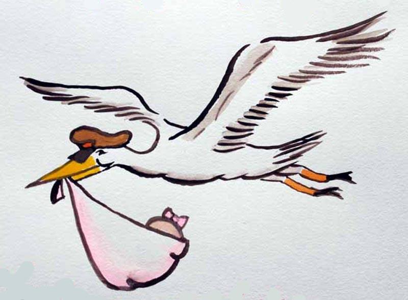 stork_watercolor