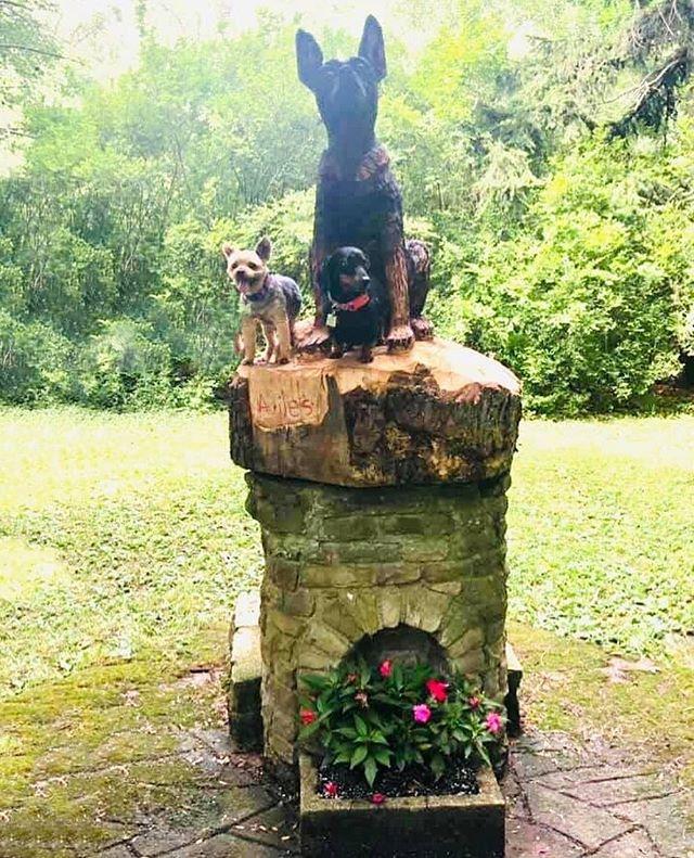 Grux and Gracie love the new statue.  #littledogsrule #dogsposingforphotos #ellicottislandbarkparkart #lovedogs🐶 #dogsofinstagram #dogsofbuffalo #ellicottislandbarkpark #friendsofellicott Photo Credit: Linda Coakley-Hanna