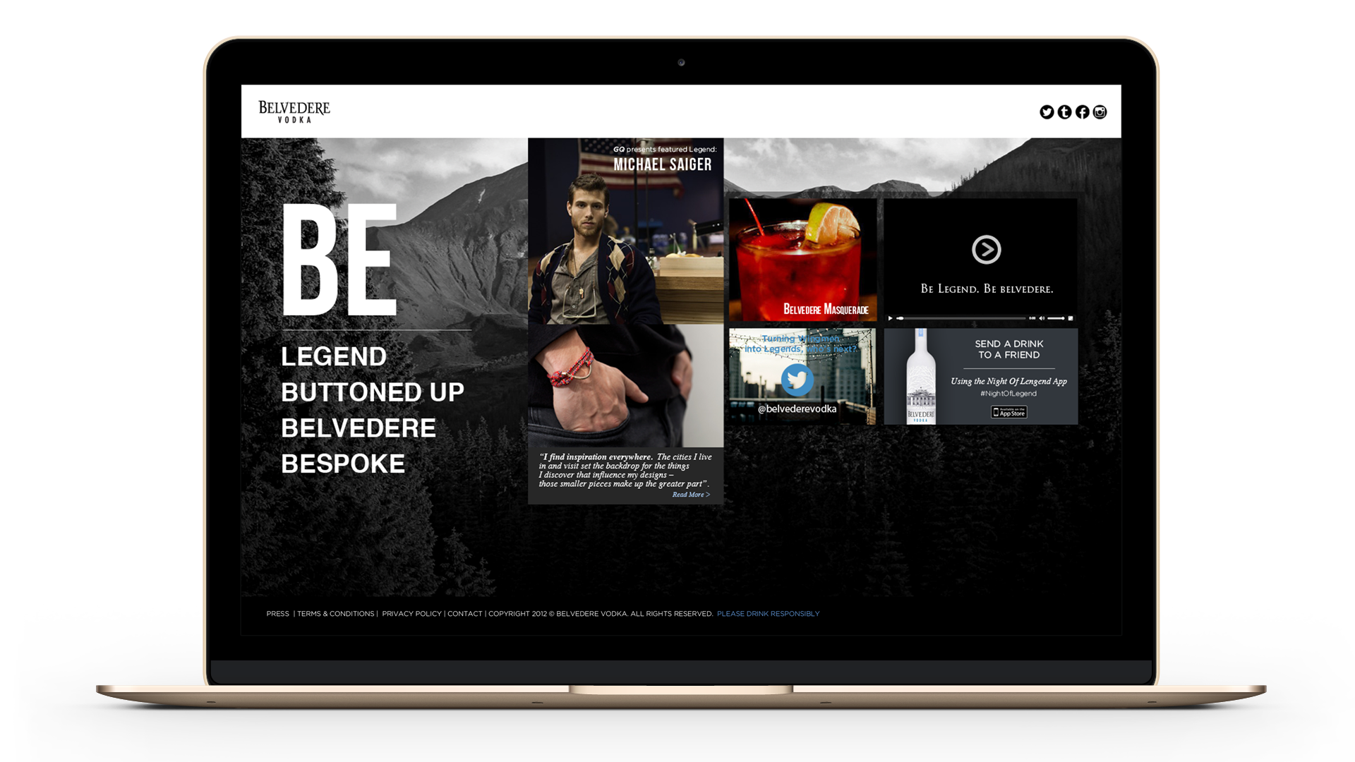 Website concept for Belvedere campaign