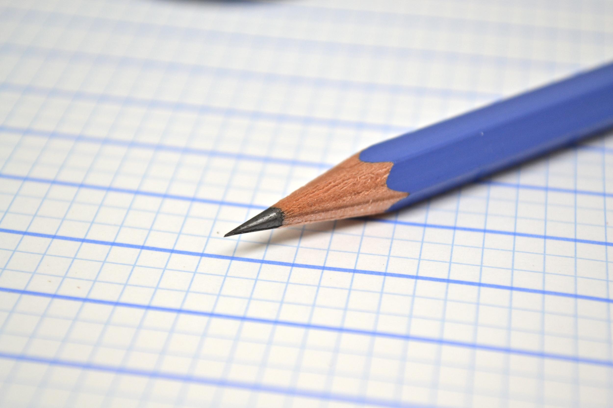 palomino golden bear pencil review