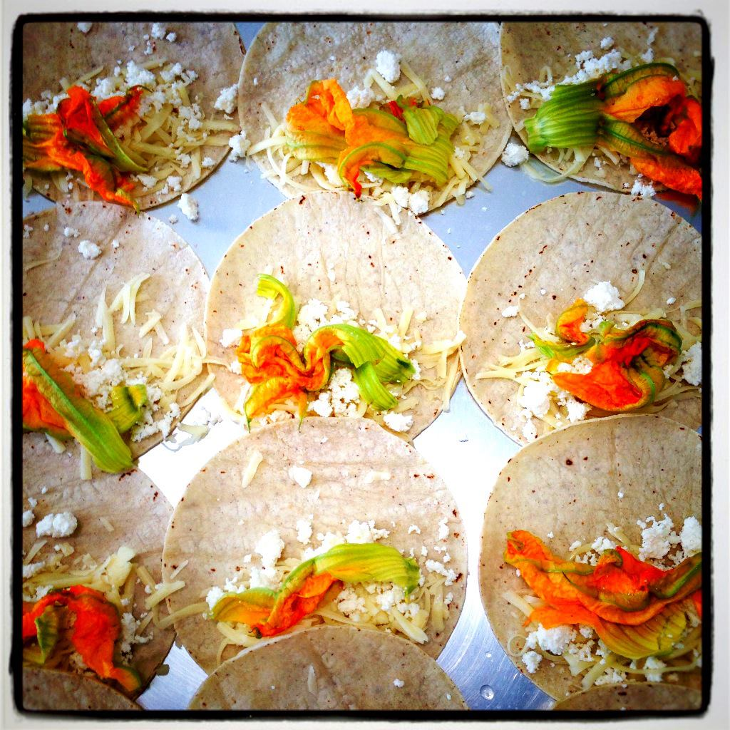 Squash blossom quesadillas before the poblano, pickled red onion and epazote. Photo by my sous chef at Good Eggs Tracy Tingle.