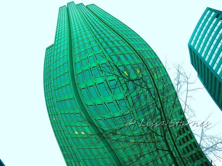 architecture (9).jpg