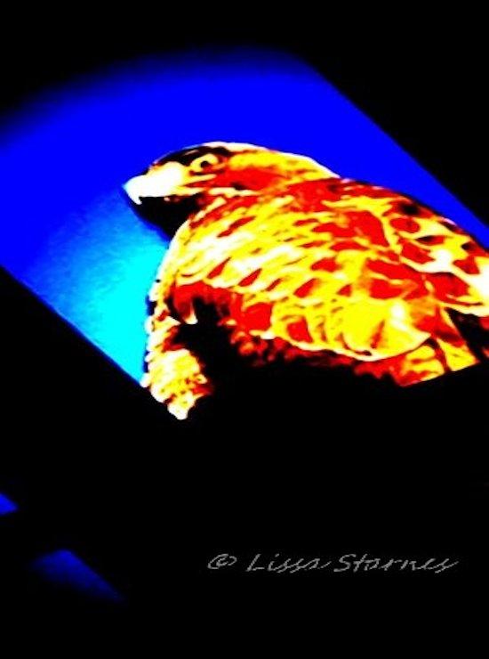 mobile art 1 (10).jpg