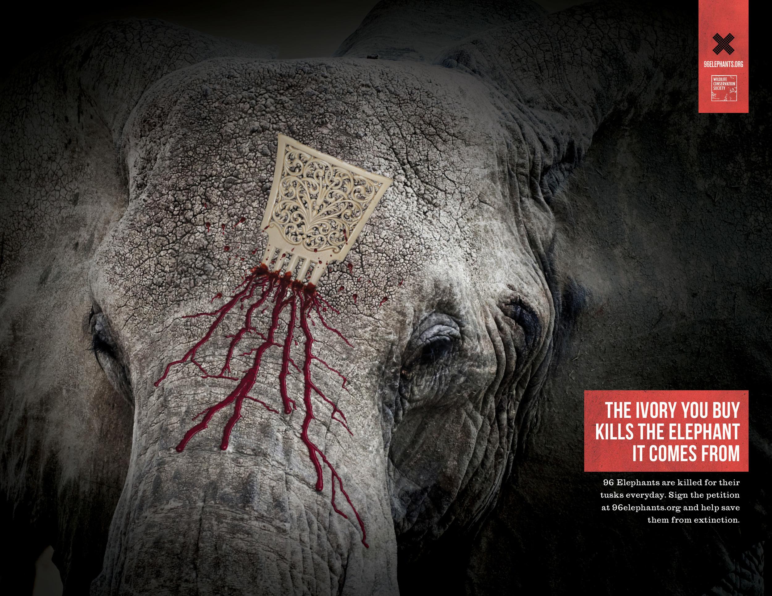96 Elephants print_letter.jpg