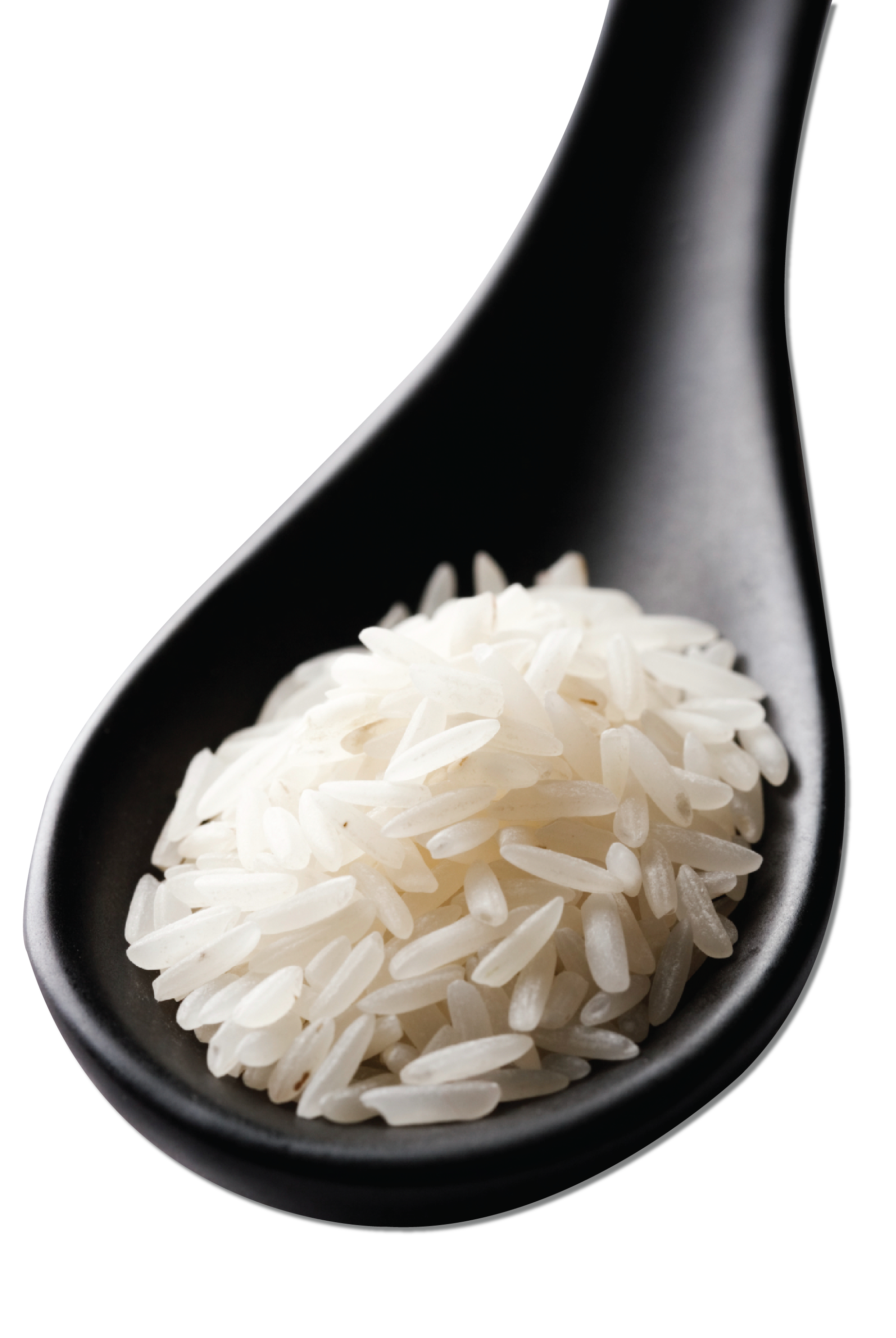 Rice Spoon.png