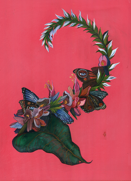 Mariposa la en invasion