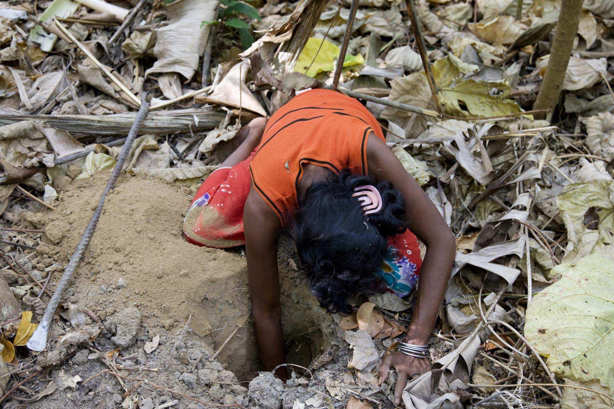 35.Sabai trepanned for wild yams in the rainforested Island.jpeg