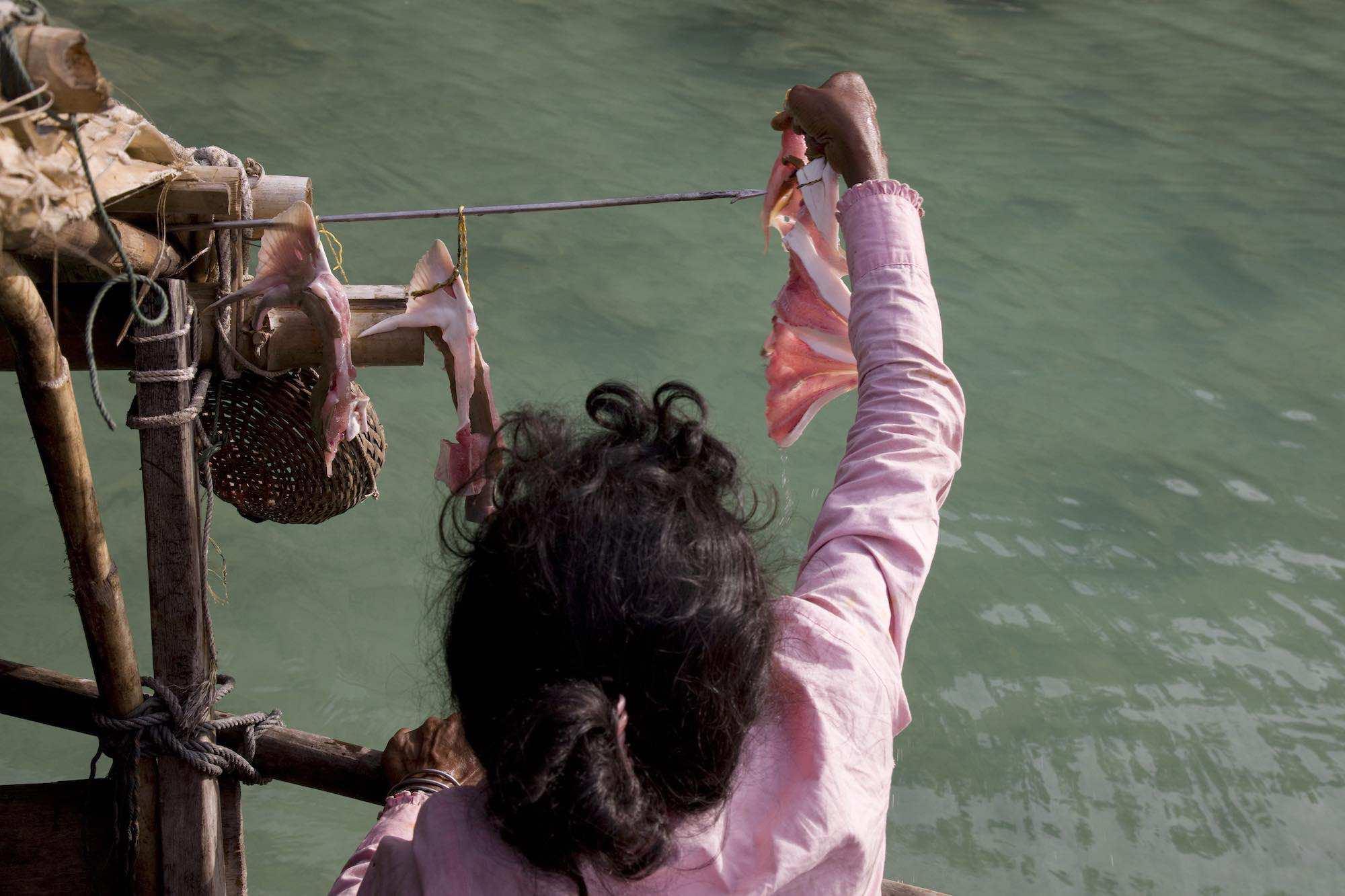48.Sabai dring fish.jpeg