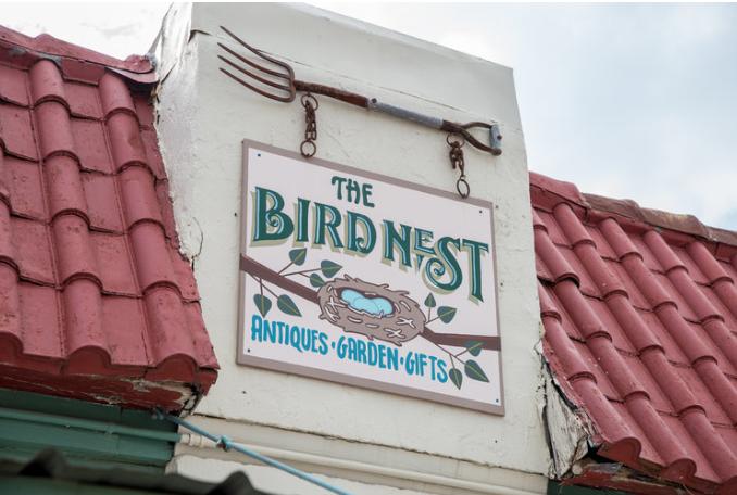 Birds Nest.png