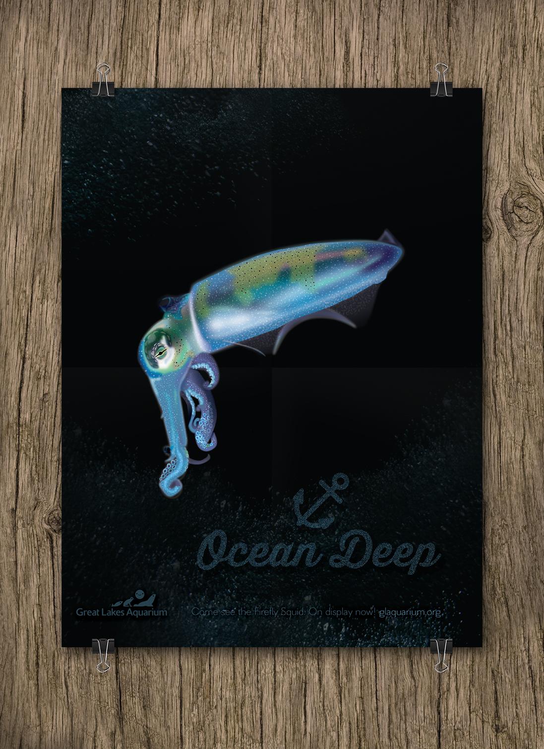 firefly-squid.jpg