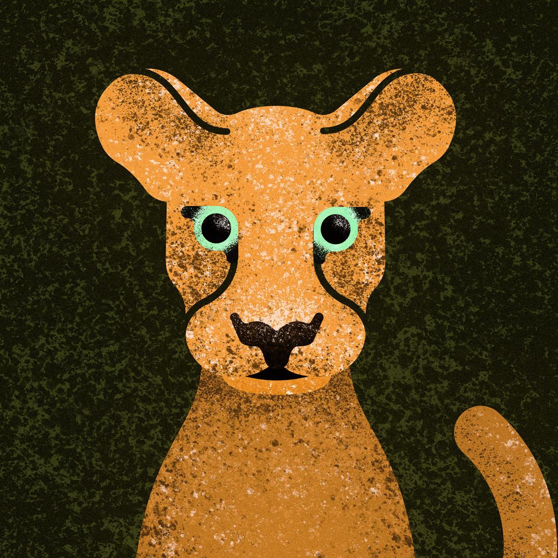 cougar_small.jpg