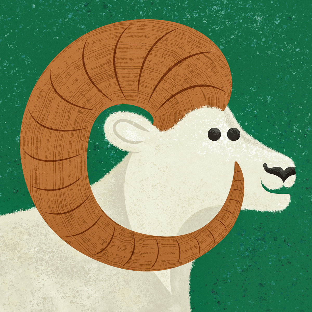 dall_sheep.jpg