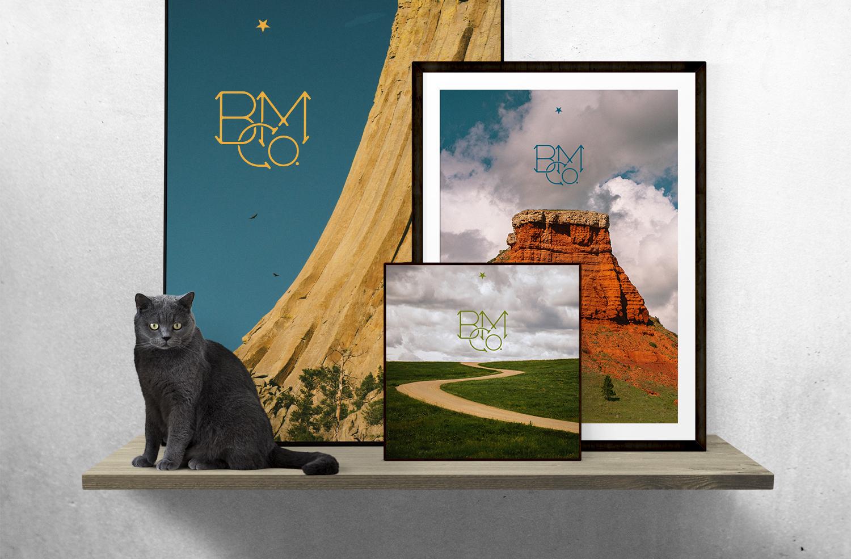 bmc_cat.jpg