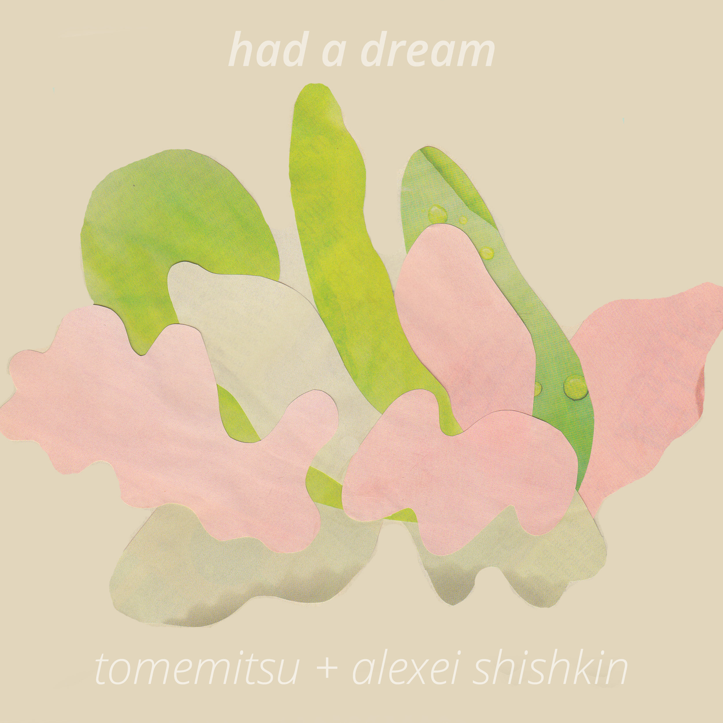 Alexei Shishkin / Tomemitsu -  Had a Dream   [FA038 / CS + Digital]