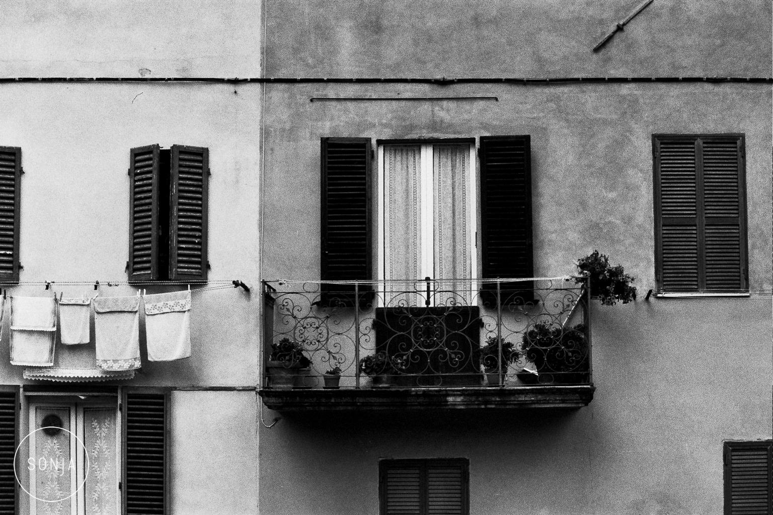 Sonja Lyon Photography-1-2.jpg