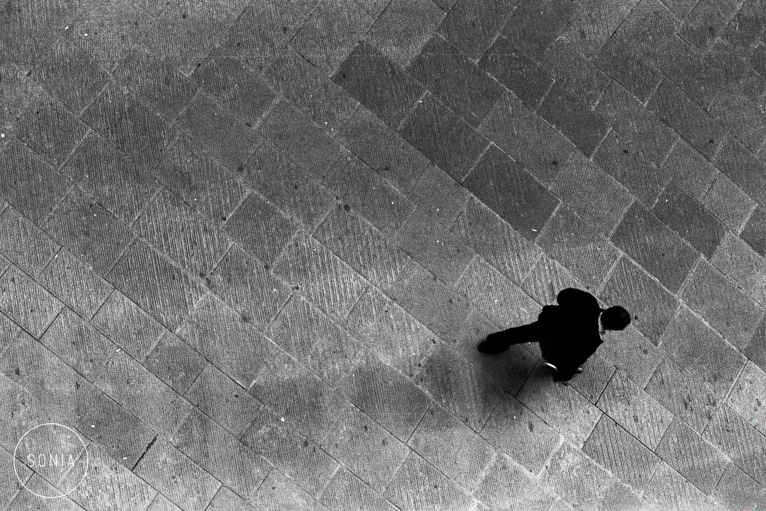 Sonja Lyon Photography-7-2.jpg