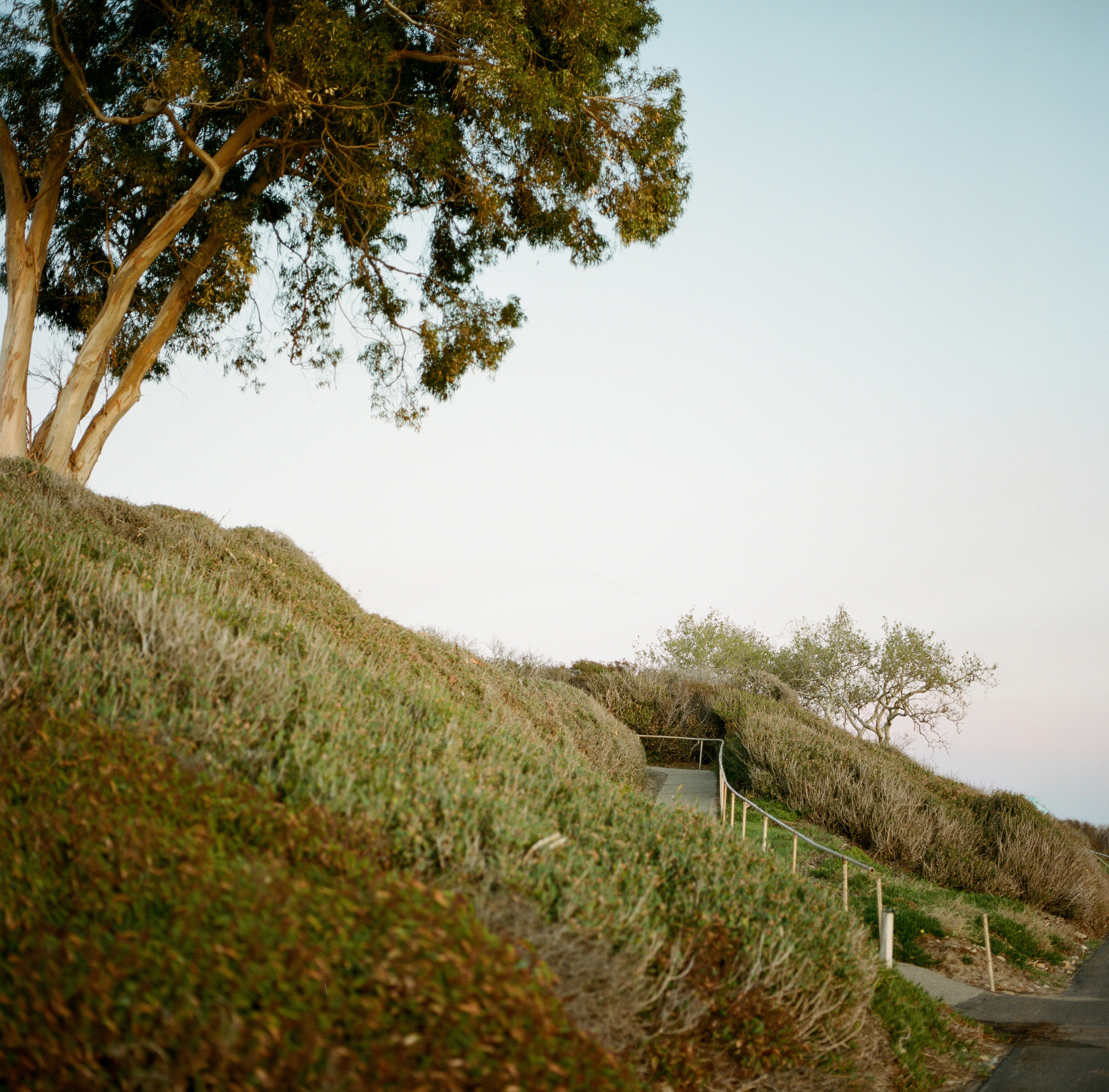 field-trip-film-5.jpg