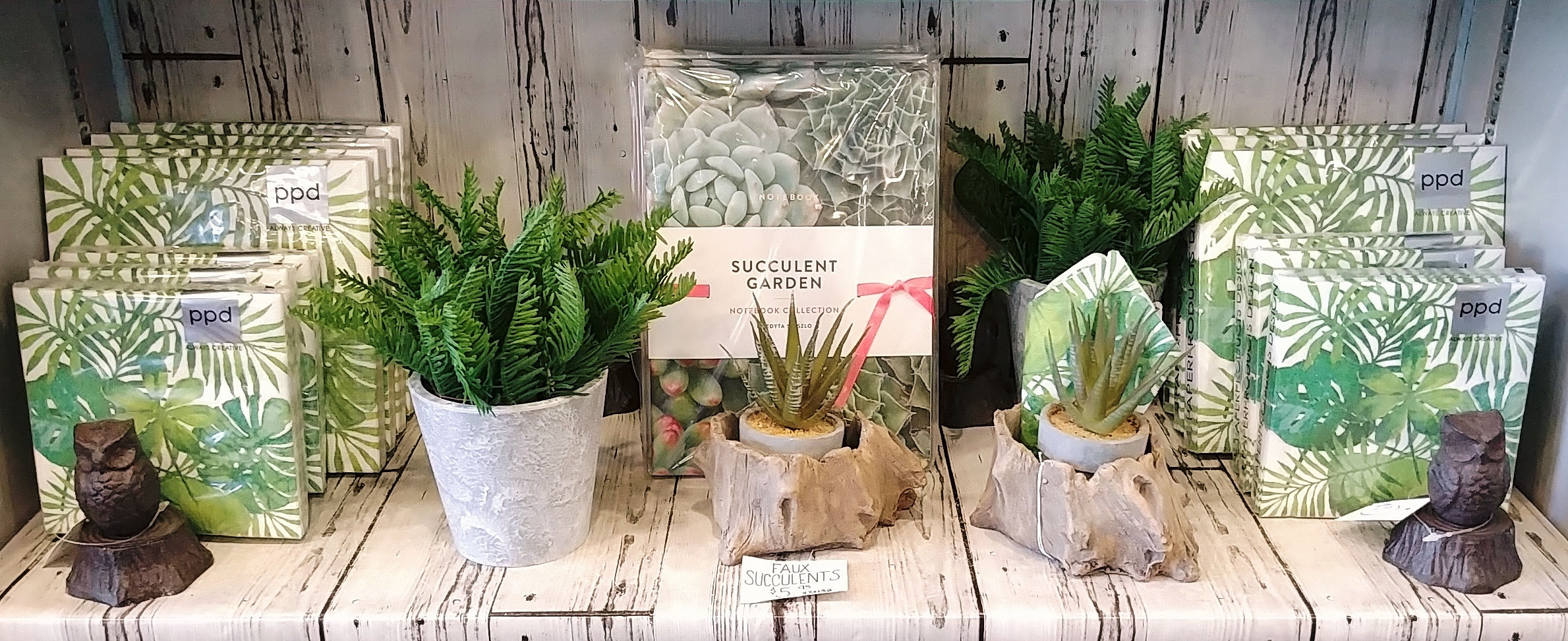 Green, from beginning to end. Succulents are the theme in this corner of the shop, while we wait for spring to arrive.  April 25, 2019